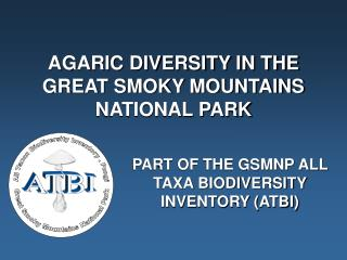 AGARIC DIVERSITY IN THE GREAT SMOKY MOUNTAINS NATIONAL PARK