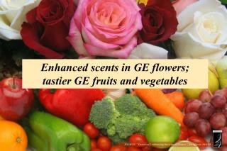 Enhanced scents in GE flowers;  tastier GE fruits and vegetables