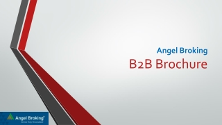 Angel Broking B2B Brochure