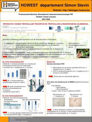 Professionele Bachelor Biomedische Laboratoriumtechnologie FBT Student: Cindy Lecluyse 2007-2008