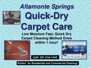 Lake Mary Discount Carpet Cleaner 321-216-1442