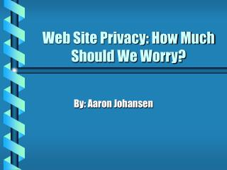 Web Site Privacy: How Much Should We Worry?