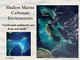 Shallow Marine Carbonate Environments