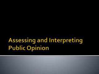Assessing and Interpreting Public Opinion