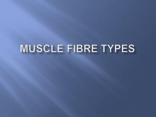 Muscle Fibre types