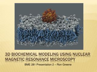 3D biochemical Modeling Using Nuclear Magnetic Resonance Microscopy