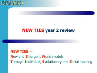 NEW TIES year 2 review