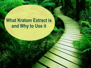 What Kratom Extract is and Why to Use it