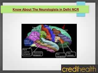 Know About The Neurologists in Delhi NCR