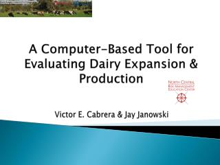 A Computer-Based Tool for Evaluating Dairy Expansion  Production