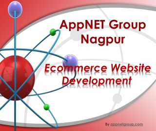 Ecommerce Website Development IT Solution Nagpur