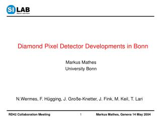 Diamond Pixel Detector Developments in Bonn