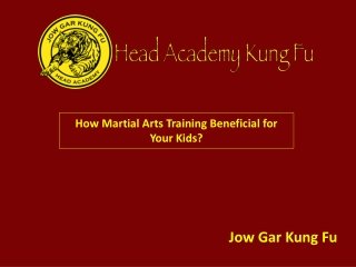 How Martial Arts Training Beneficial for Your Kids?