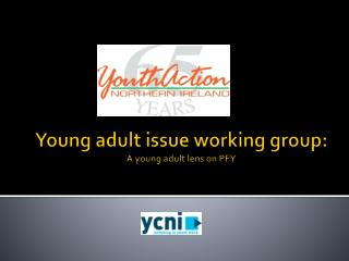 Young adult issue working  group: A young adult lens on PFY