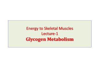 Energy to Skeletal Muscles Lecture-1 Glycogen Metabolism