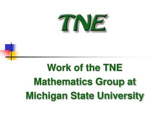 Work of the TNE Mathematics Group at Michigan State University