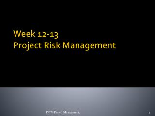 Week 12-13 Project Risk Management