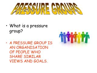 What is a pressure group? A PRESSURE GROUP IS AN ORGANISATION OF PEOPLE WHO SHARE SIMILAR VIEWS AND GOALS.
