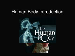 Human Body Introduction
