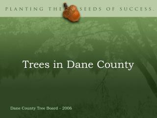 Trees in Dane County
