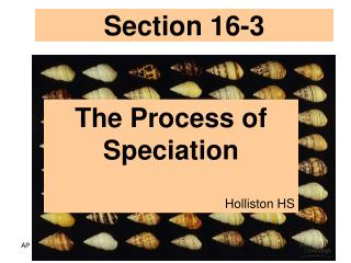 Section 16-3