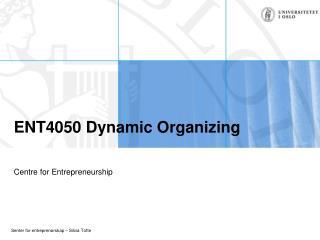 ENT4050 Dynamic Organizing