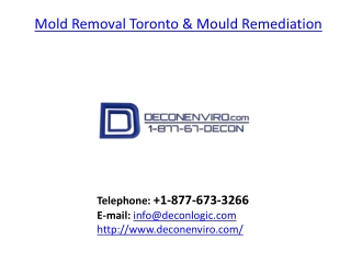 Mold Removal Toronto and Mould Remediation
