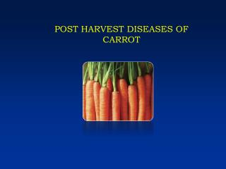 POST HARVEST DISEASES OF CARROT