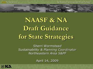 NAASF & NA  Draft Guidance  for State Strategies