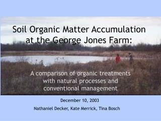 Soil Organic Matter Accumulation at the George Jones Farm: