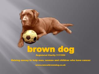 brown dog Registered Charity 1111550 Raising money to help men, women and children who have cancer www.cancerbrowndog.c