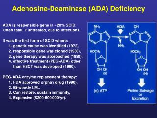 Adenosine-Deaminase (ADA) Deficiency