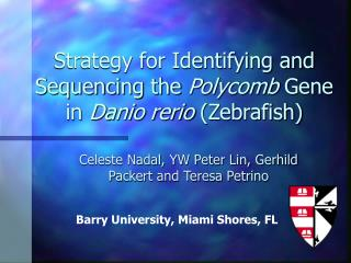 Strategy for Identifying and Sequencing the  Polycomb  Gene in  Danio rerio  (Zebrafish)