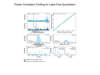 Protein Correlation Profiling for Label-Free Quantitation