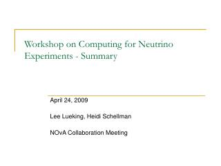 Workshop on Computing for Neutrino Experiments - Summary