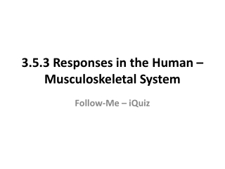 3.5.3 Responses in the Human – Musculoskeletal System