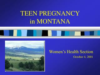 TEEN PREGNANCY  in MONTANA