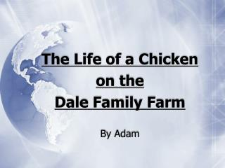 The Life of a Chicken on the  Dale Family Farm By Adam
