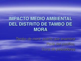 IMPACTO MEDIO AMBIENTAL DEL DISTRITO DE TAMBO DE MORA
