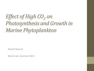 Effect of High CO 2 on Photosynthesis and Growth in Marine Phytoplankton