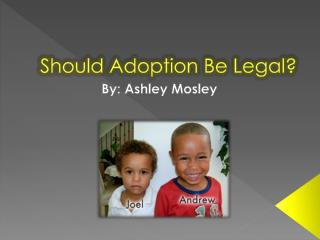 Should Adoption Be Legal?