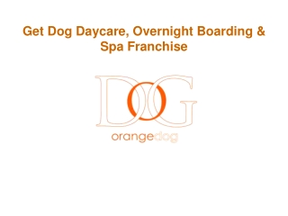 Get Dog Daycare, Overnight Boarding