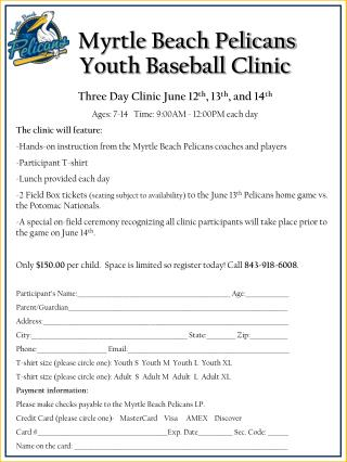 Myrtle Beach Pelicans Youth Baseball Clinic