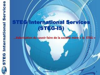 STEG International Services STEG-IS