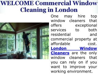 Expert Window Cleaning Company in London