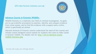Course in Wildlife Forensic to become Specialist