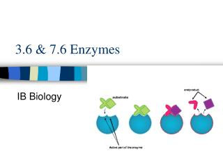 3.6  7.6 Enzymes