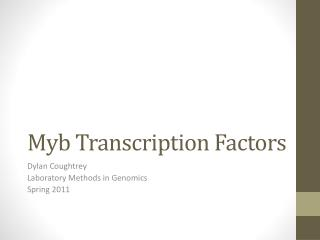 Myb Transcription Factors