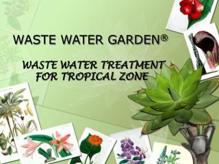 WASTE WATER GARDEN ®