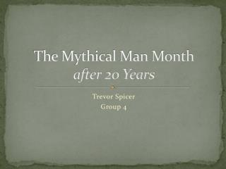 The Mythical Man Month after 20 Years